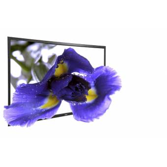 Màn chiếu phim HD, Full HD, 3D 80 inch